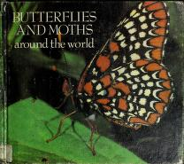 Cover of: Butterflies and moths around the world | Eveline Jourdan